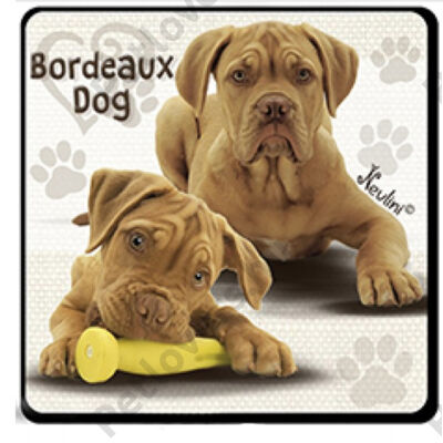 Bordeaux dog hűtőmágnes