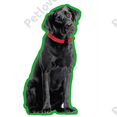 Labrador autóillatosító - fekete