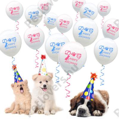 Happy Birthday Dog lufi - kék