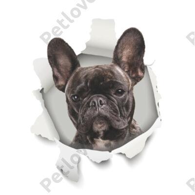 Francia Bulldog 3D matrica 2
