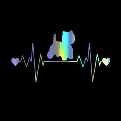 EKG Westie matrica