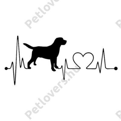 EKG Labrador matrica