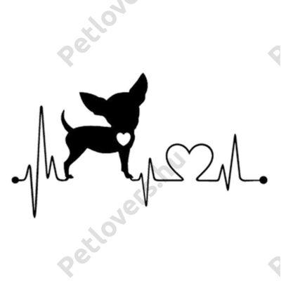EKG Chihuahua matrica