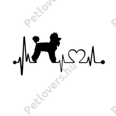 EKG Uszkár matrica