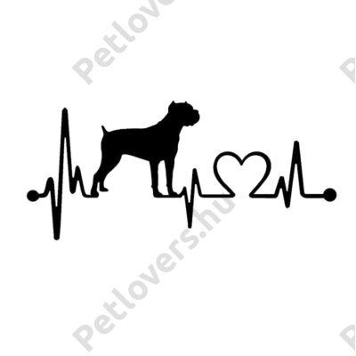 EKG Cane Corso matrica