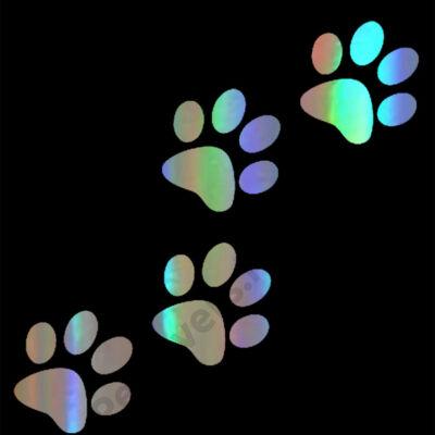 Mancs matrica - hologram
