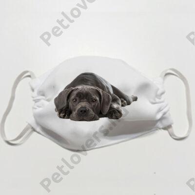 Cane Corso mintás szájmaszk - puppy