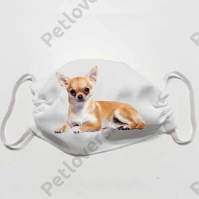 Chihuahua mintás szájmaszk