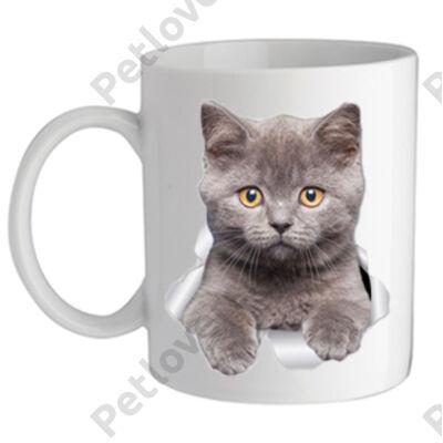Brit rövidszörű macska bögre