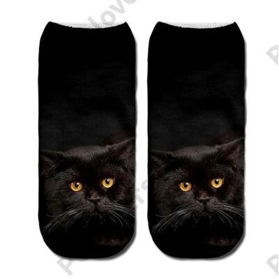 Fekete cicás zokni
