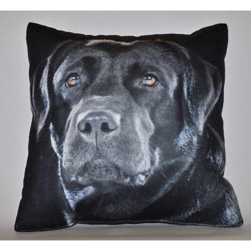 Labrador mintás párna