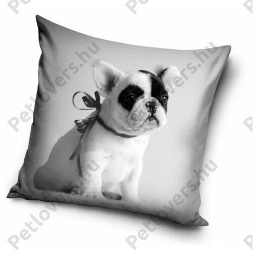 Francia Bulldog mintás párna - masni