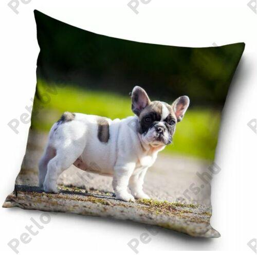 Francia Bulldog mintás párna - puppy