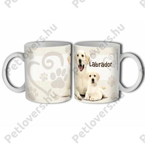 Labrador bögre