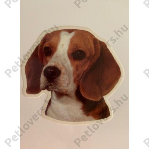 Beagle matrica