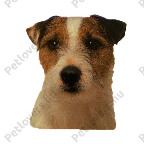 Jack Russell Terrier matrica