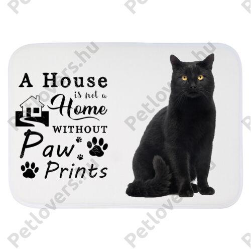 Fekete cicás szőnyeg - a house