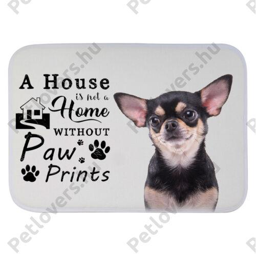 Chihuahua mintás szőnyeg - a house