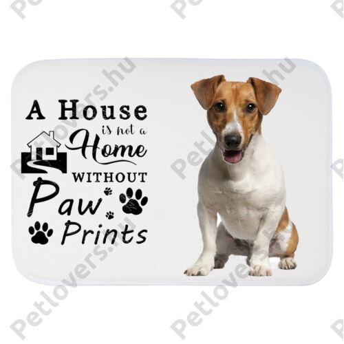 Jack Russell Terrier mintás szőnyeg - a house