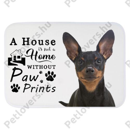 Pinscher mintás szőnyeg - a house