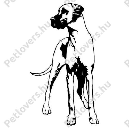 Dan Dog matrica