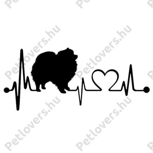 EKG Spicc matrica