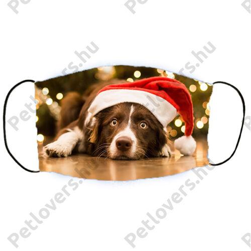 Border Collie mintás karácsonyi szájmaszk