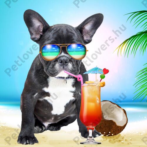 Francia Bulldog mintás poháralátét - beach