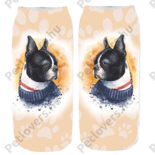 Boston Terrier mintás zokni - paint