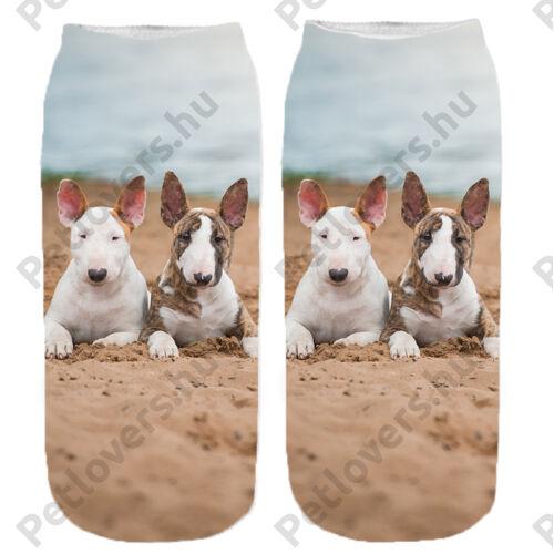 Bullterrier mintás zokni - puppy