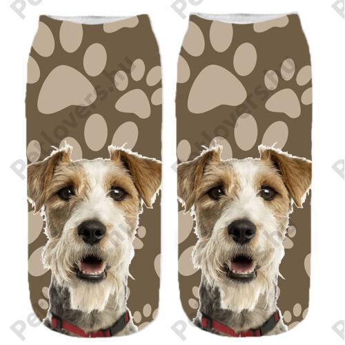 Foxterrier mintás zokni - mancsos
