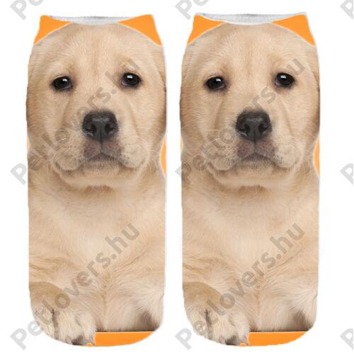 Labrador mintás zokni - narancs