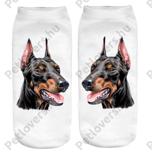 Dobermann zokni - paint