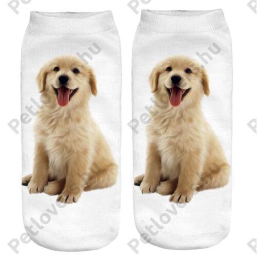 Golden Retriever zokni - puppy