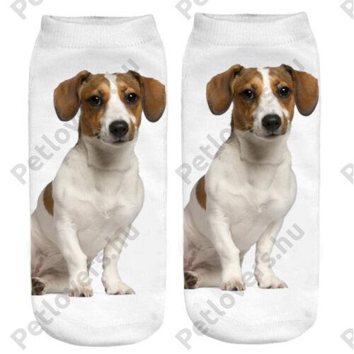 Jack Russell terrier zokni