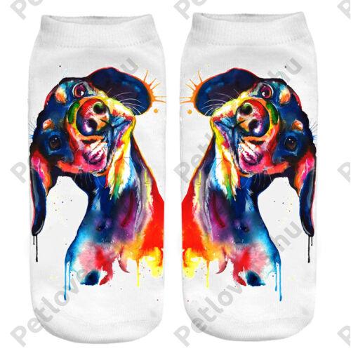 Tacskó zokni - paint