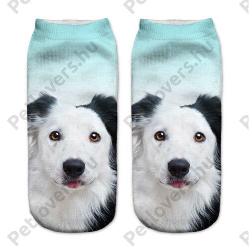 Border Collie mintás zokni - kék