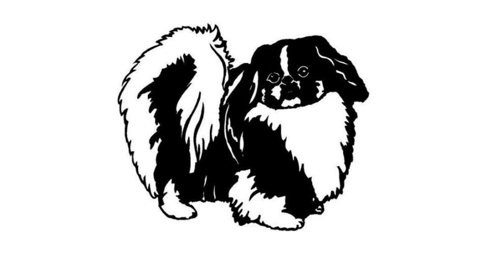 a63b92cfe562 Pekingi palotapincsi matrica - Kutyás matrica - Egyedi kutyás, macskás  ajándékok állatimádóknak